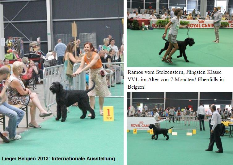 Bilder von der Ausstellung in Liege / Belgien vom 27.07.2013