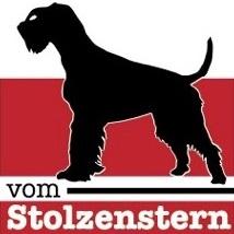 Logo vom Stolzenstern